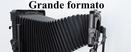 logo13grandefo